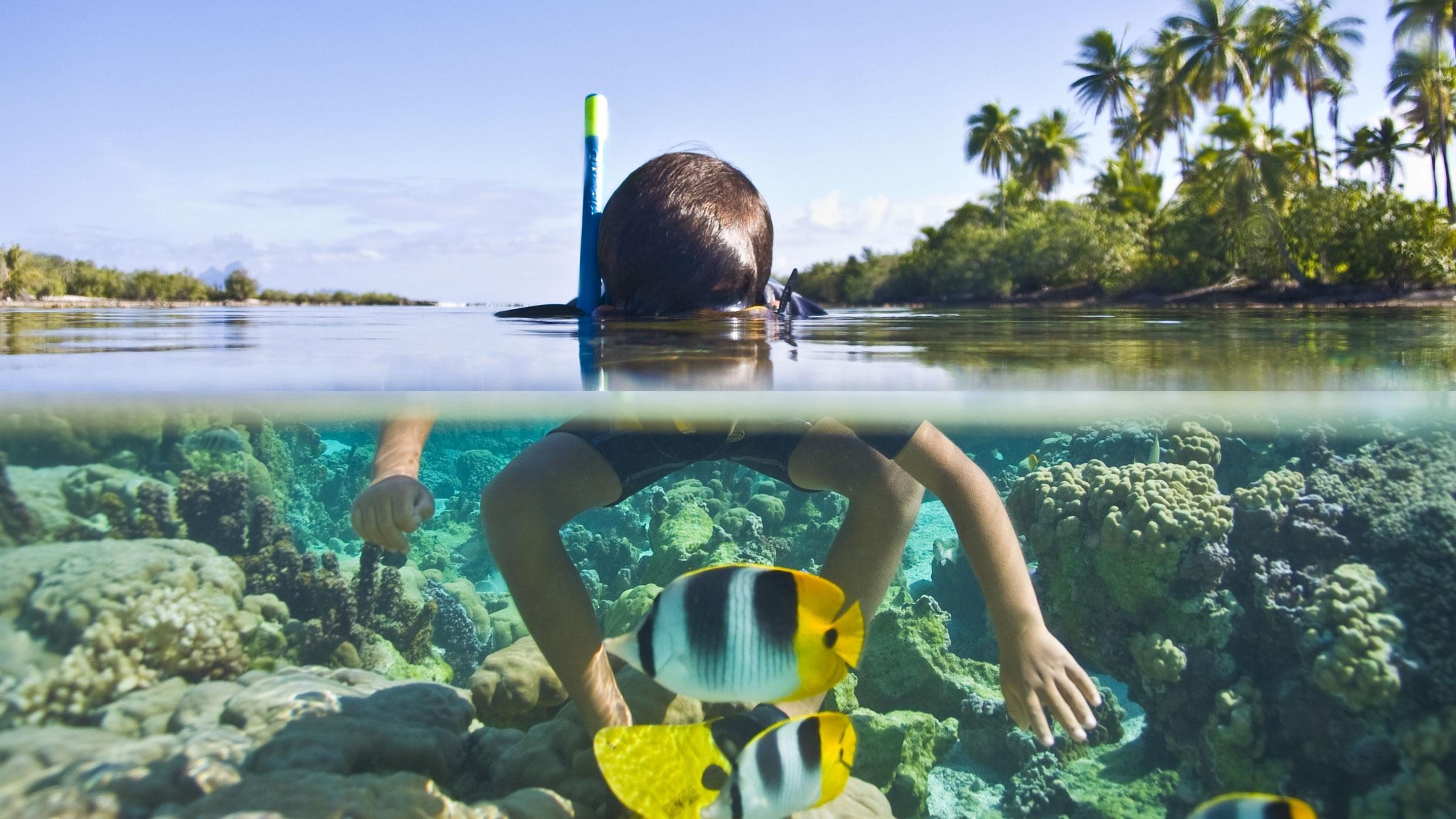 Crédit Mathieu Flickr Tahaa Snorkeling